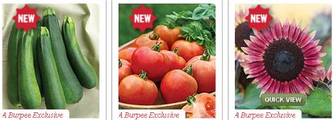 Burpee coupon code