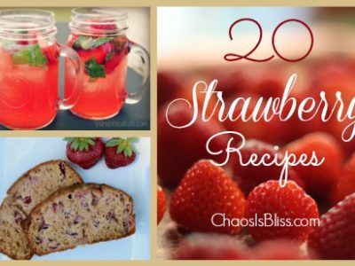 When fresh strawberries are on sale or freshly picked, what are some ways to use them? Here are 20 Strawberry recipes including breads, jams, and desserts.