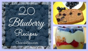 20 Blueberry Recipes