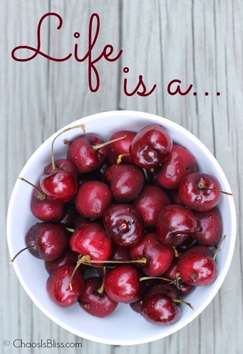 Life is a Bowl of Cherries, and when you need an easy way to pit cherries, I have just the gadget to do the trick.