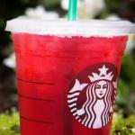 Starbucks Treat Receipt