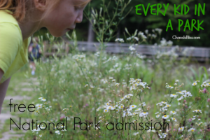 Free family travel when you visit a National Park, with the new Every Kid in a Park initiative from President Obama.