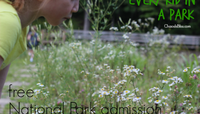 Family Travel | Every Kid in a Park FREE National Park Admission Initiative