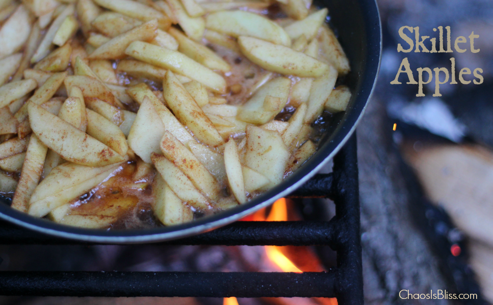 The easy camping recipe you can't leave home without! Campfire Skillet Apples, an apple recipe you can make on the stove or over a fire.