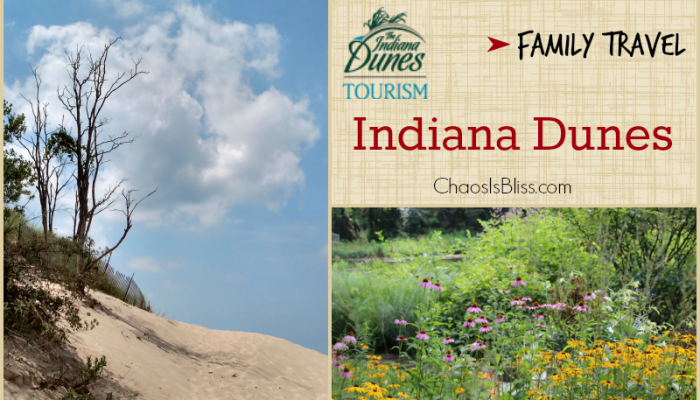 Family Travel | Indiana Dunes and Southwest Michigan Part II