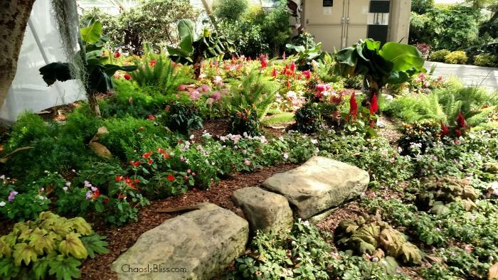 Botanical Conservatory garden