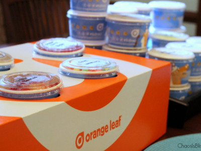 Just when you thought frozen yogurt couldn't get any better, Orange Leaf busted that myth with these new flavors and concept.