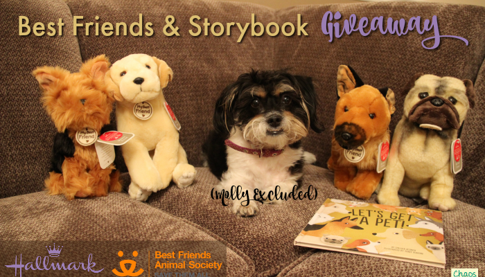 Best Friends Animal Society | Hallmark Giveaway
