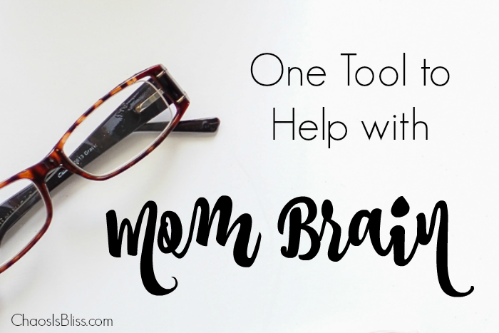 """I totally have """"mom brain"""", and found this to be one tool that helps me survive!"""