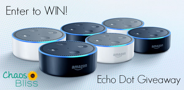 GIVEAWAY | Enter to Win an Amazon Echo Dot