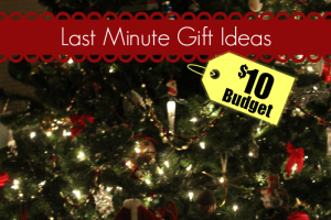 Christmas is just days away, and if you're struggling with finding the time or the budget for last minute Christmas gifts to fill in the gaps, I have a few ideas that will fit within a $10 budget, and can be under the tree in time.