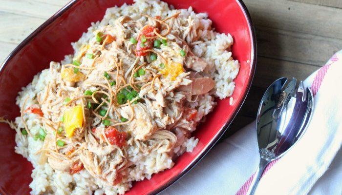 Easy & Mild Slow Cooker Chicken Satay | Thai Peanut Chicken Recipe
