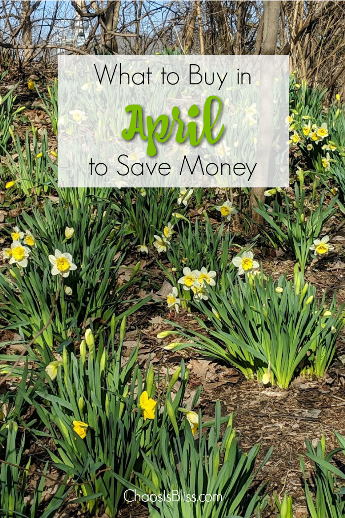 Spring has sprung! Take a look at what to buy in April, and what purchases you should avoid in April, in order to spend less around the house!